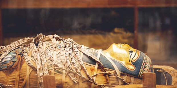 Древние египтяне делали мумии на тысячу лет раньше, чем считалось
