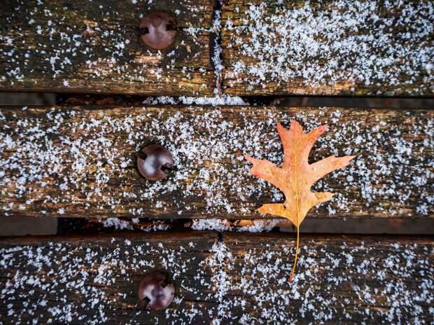 Небольшой снег ожидается в Удмуртии в понедельник