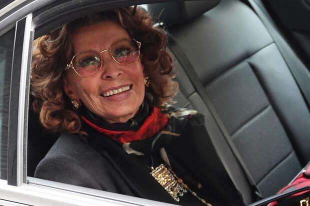 Как сейчас выглядит и чем занимается 87-летняя Софи Лорен