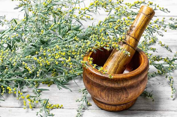 витамины и травы для женского здоровья
