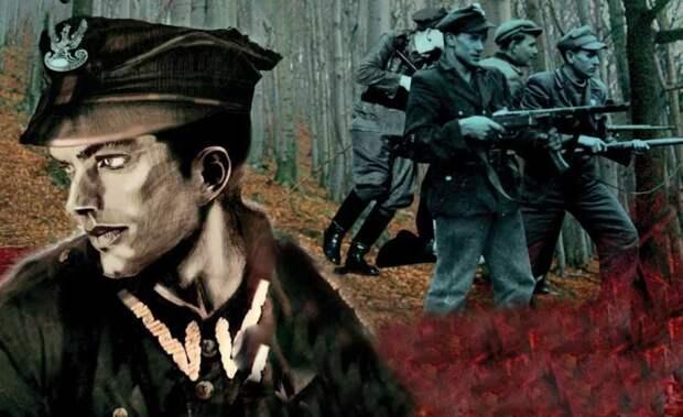 «Польская операция» НКВД и её причины