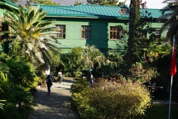 А дача вождя зеленая для обеспечения безопасности. Было много посетителей.