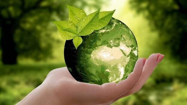 """Новый """"зеленый стандарт"""" намерены создать РФ и ближневосточные страны"""