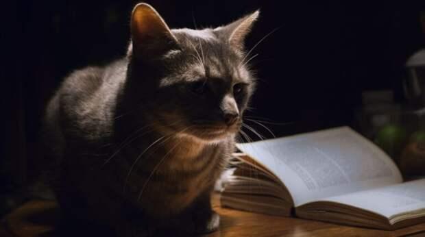 Что делать, если кошка будит вас по ночам