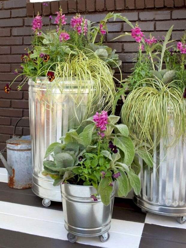 Простые идеи озеленения приусадебного участка: отличный результат при отсутствии затрат