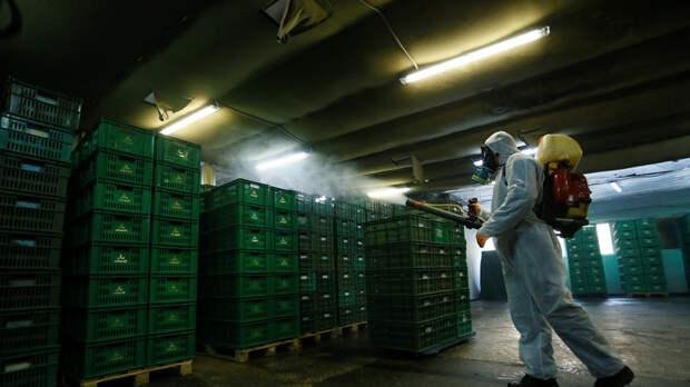 Число случаев заражения коронавирусом на Украине достигло 475