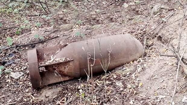 Спасатели обезвредили две авиационные бомбы времен ВОВ под Люберцами