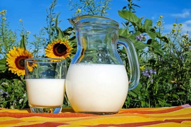 Молоко, Стекло, Кувшин, Свежие, Свежее Молоко, Пить