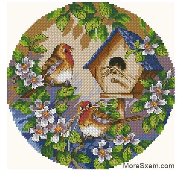 Птички возле скворешника