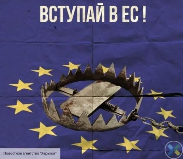 «Украина в шаге от распада»: политолог Кочетков оценил действия президента Зеленского