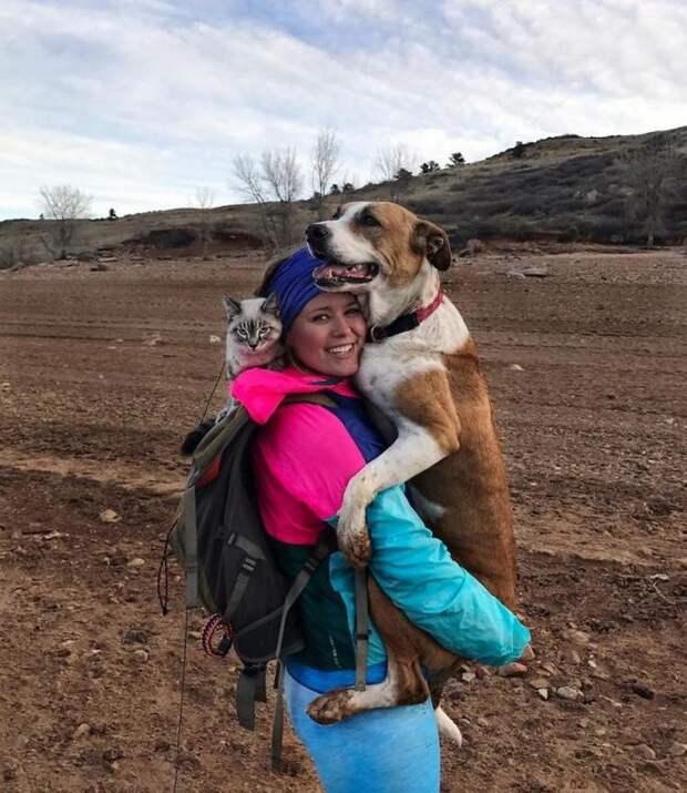 Фотографии друзей-путешественников — пса и кота. И их хозяйки