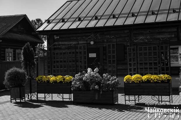 Дело хризантем: в усадьбе Петра Чайковского в Воткинске произошла «дерзкая кража»