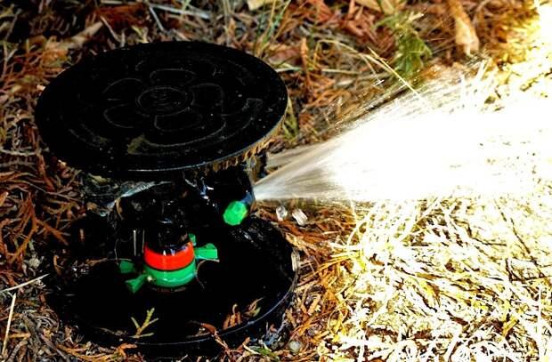 Автоматический полив сада - почему оно того стоит?