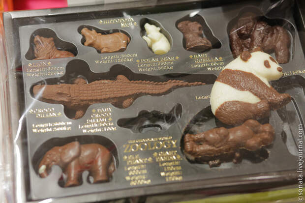 Шоколадное изобилие