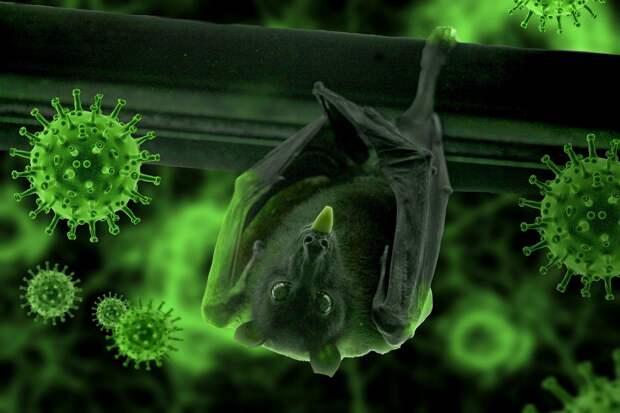 Британские учёные раскрыли происхождение коронавируса
