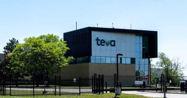 Руководителем отдела маркетинга, исследования рынка и коммуникаций с клиентами компании Teva стала Елена Быкова