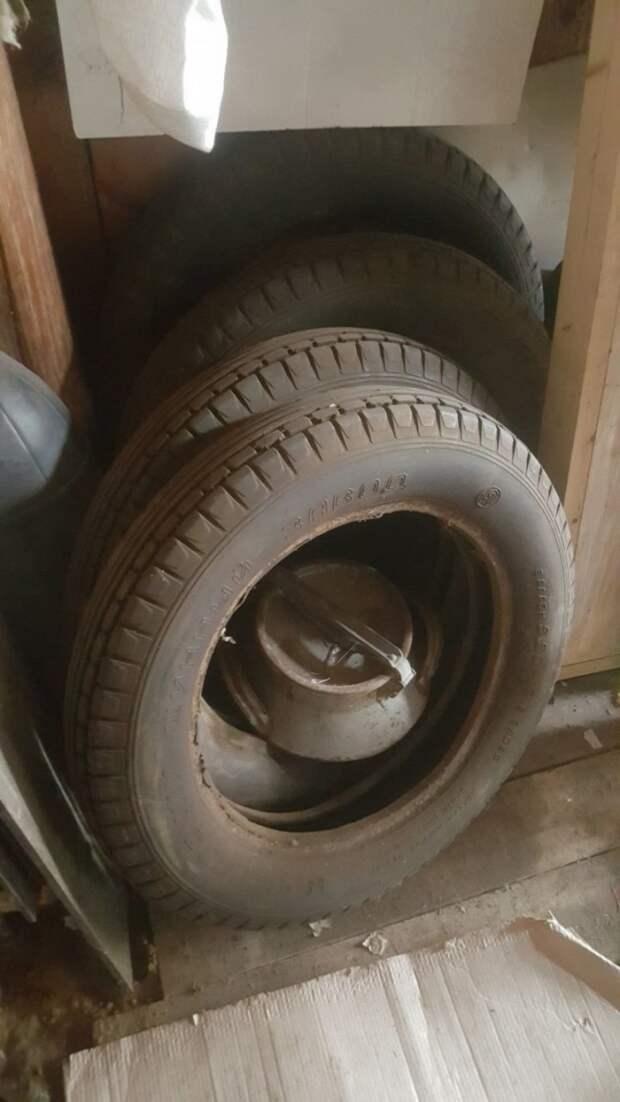 """В поисках невозможного: ГАЗ-6 """"Пионер"""" barn find, авто, автомобили, газ, газ-6, находка, олдтаймер, ретро авто"""