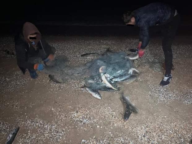 Крымские пограничники с начала года провели более 30 рейдов по незаконной ловле рыбы