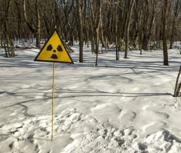 Скачок уровня радиации в Европе МАГАТЭ связало с работами на ядерном реакторе