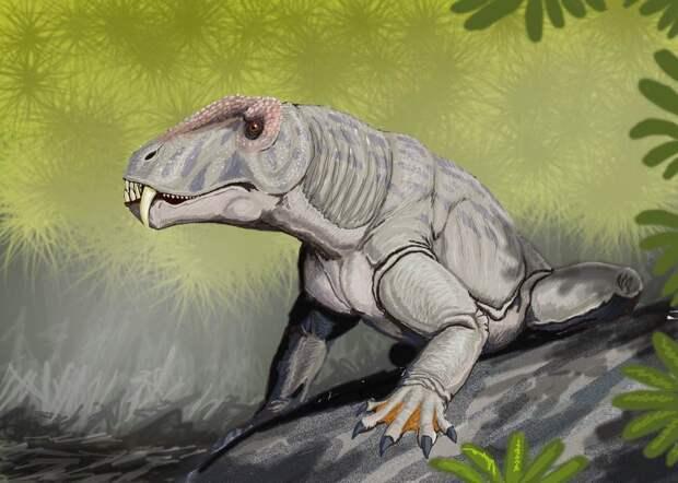 """Неповоротливый антеозавр на деле оказался быстрой и опасной """"машиной для убийств"""""""