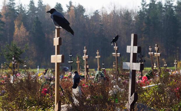 Власти пообещали бесперебойную работу кладбищ и моргов в четвертую волну Covid-19