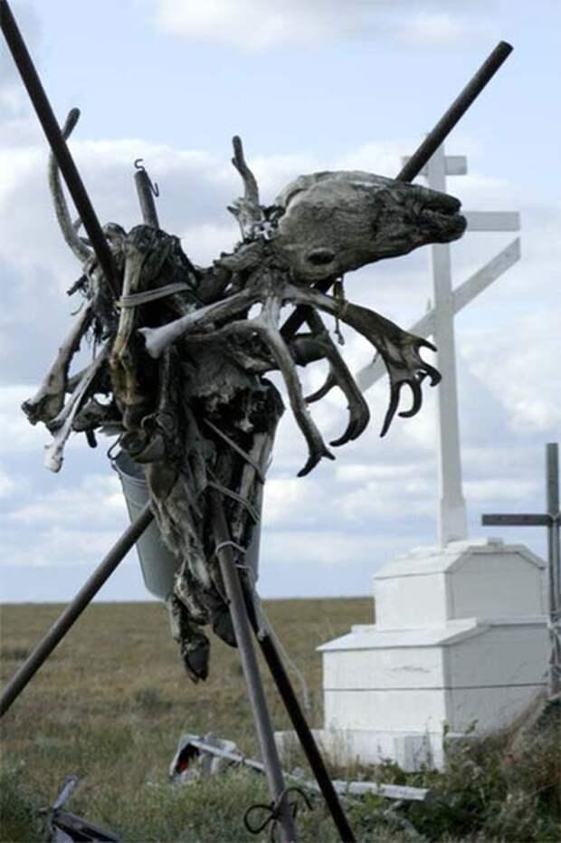 Долганская могила. /Фото:yakutskhistory.net