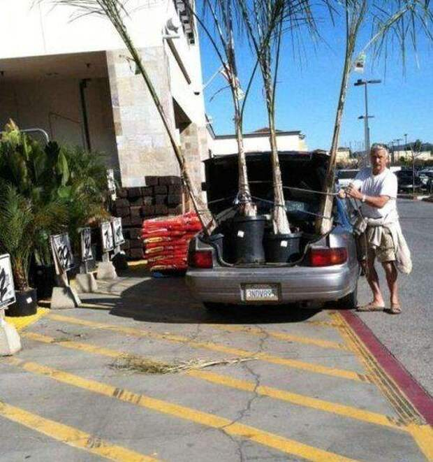 Подборка автомобильных приколов (40 фото)