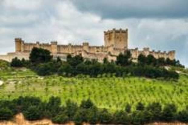 Замок Пеньяфьель – Музей вина Испании