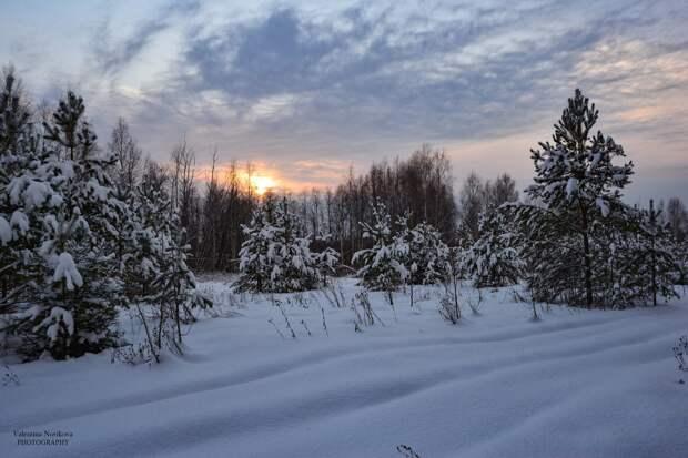 Красоты России (#525)