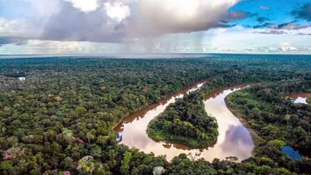 Сделка ОПЕК+ стала причиной замораживания «Роснефтью» проекта вБразилии