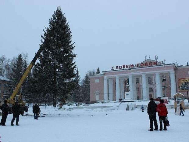 В Челябинской области мужчина фейерверком поджег городскую елку