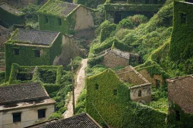 Китайскую деревню покинули люди, и уже через несколько лет ее почти полностью поглотила природа (10 фото)