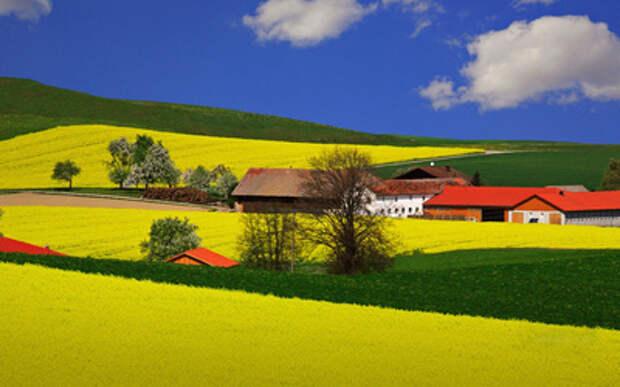 600 фермеров во Франции покончили с жизнью из-за продэмбарго РФ