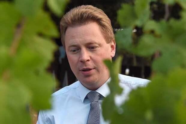 Губернатор Севастополя поручил найти виновных в гибели виноградников