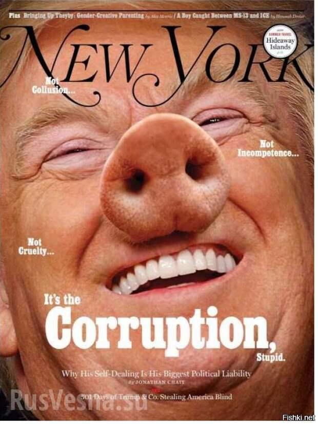 В 501-й день президентства Трампа журнал New York Magazine превратил его в свинью издания, издевательство, интересное, мир, обложки, политики, странное