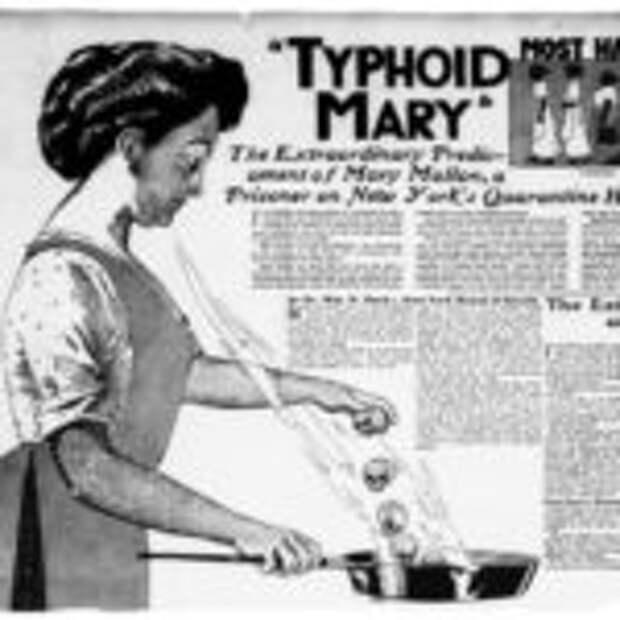 История кухарки, которая заразила смертельной инфекцией более 50 человек, а сама осталась здоровой