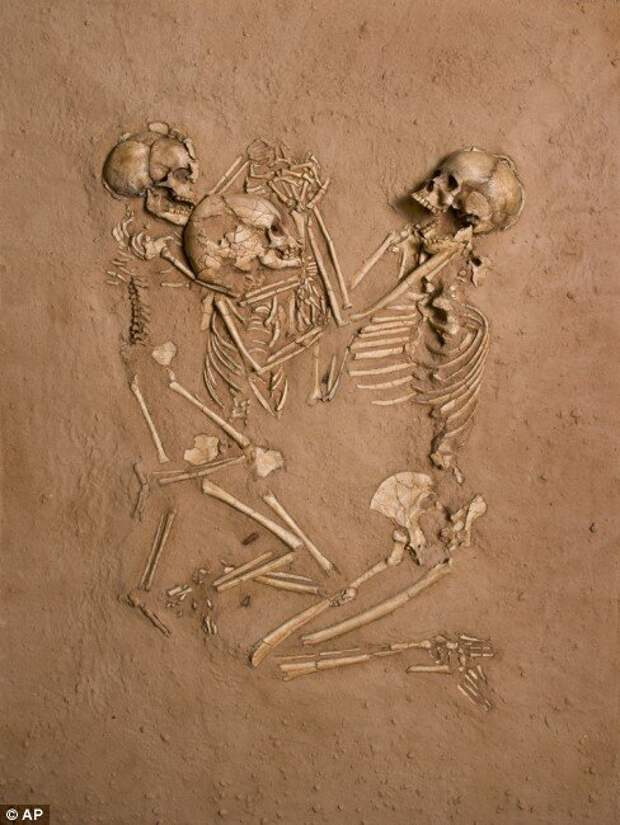 Учёные скрывают скелеты гигантов, во славу науки (18+)