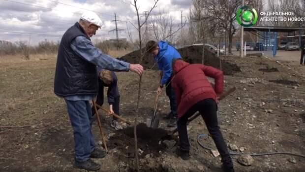ЛНР итоги 12–17 апреля: ВСУ нарушают перемирие, в Луганске прошла акция «Аллея Славы»