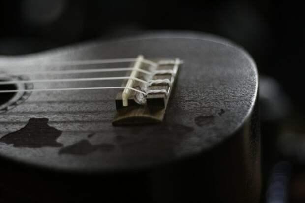 В торговом центре на Ленинградке пройдут  мастер-классы по игре на укулеле