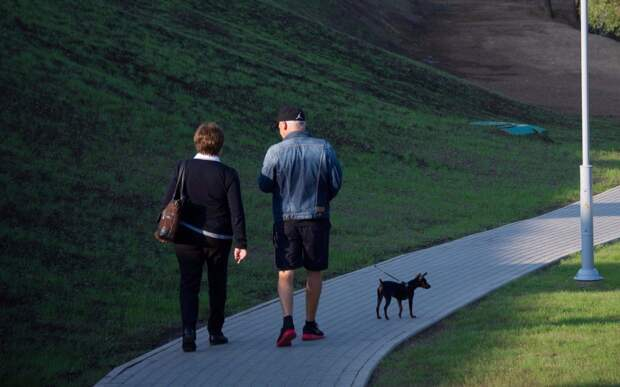 Пешеходная дорожка в парке «Тушинский» вновь безопасна