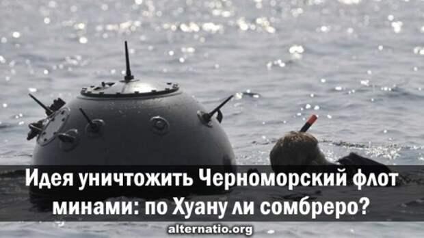 Идея уничтожить Черноморский флот минами: по Хуану ли сомбреро?