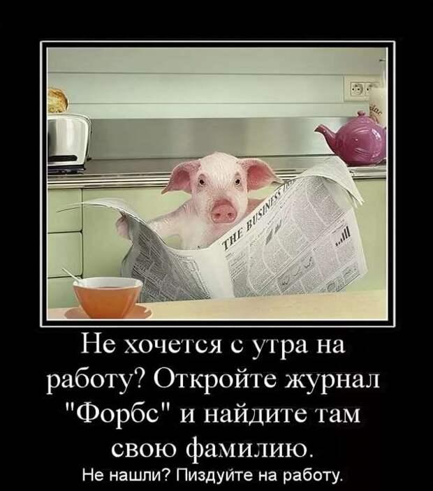 Смешные комментарии. Подборка chert-poberi-kom-chert-poberi-kom-43040703092020-10 картинка chert-poberi-kom-43040703092020-10
