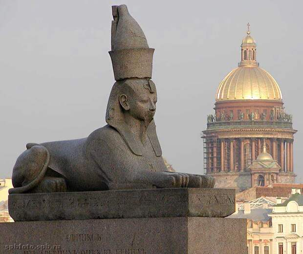 Откуда сфинксы на набережной Санкт-Петербурга история Петербурга, сфинксы