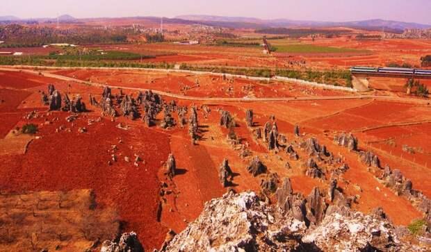 kamenniles 2 Чудеса света: каменный лес Шилинь в Китае