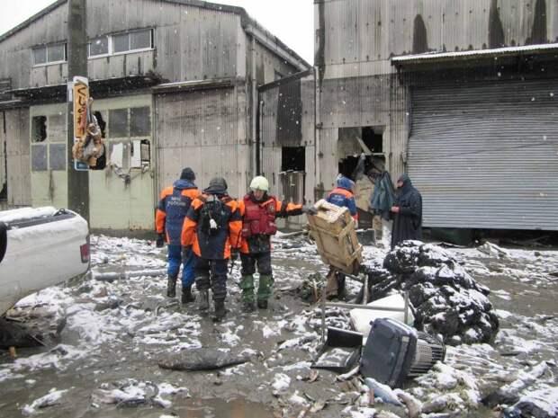 Русские спасают даром