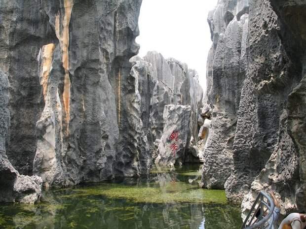 kamenniles 6 Чудеса света: каменный лес Шилинь в Китае