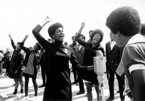Социальные конфронтации в США 1960-х - 1970-х годов: Леворадикальная Партия черных пантер   (20)
