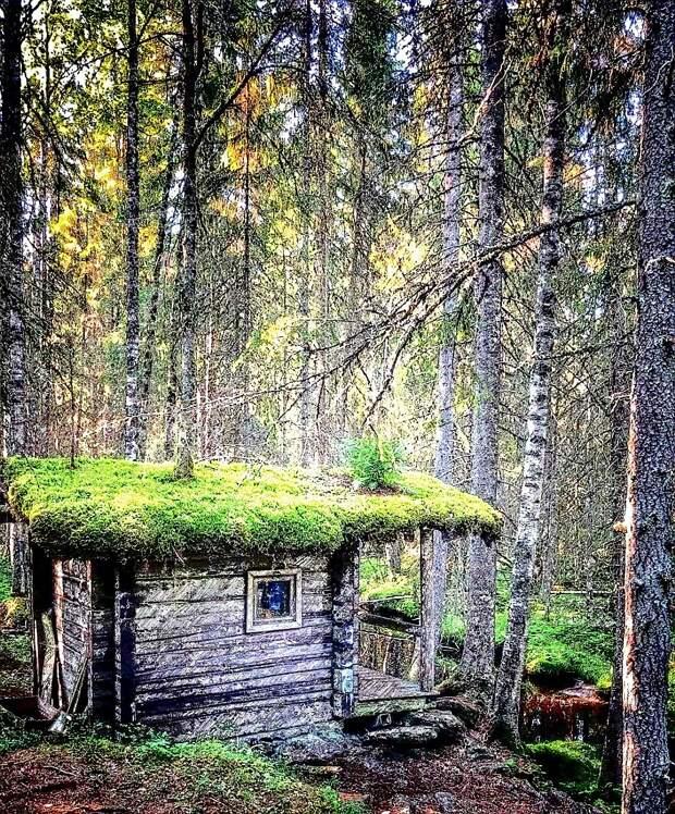 Хижина в лесу. Легенда, которая оказалась правдой. Всё только начинается.