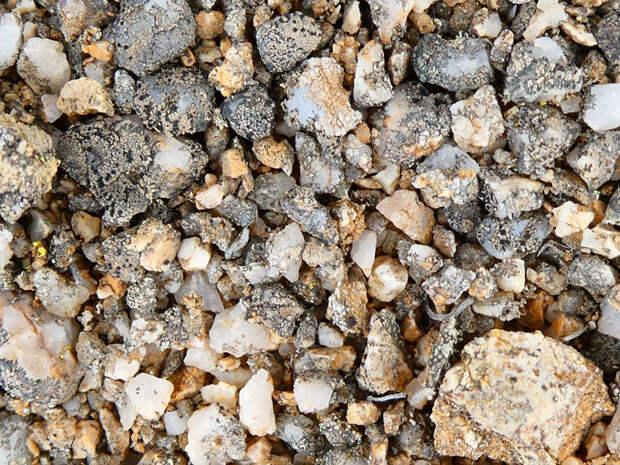 Сообщества грибов и водорослей на камнях пустыни Атакама / ©Patrick Jung et al., 2019