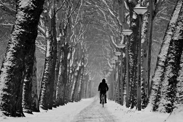 Дорога / фото: pixabay.com